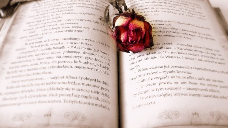 Pride and Prejudice by Jane Austen, Review
